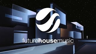 Gerald Le Funk & Anthony Mena - Healsville (Original Mix)
