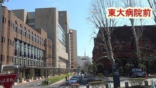 東大病院前(2019年3月17日) (4K)