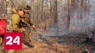В Иркутской области бушуют лесные пожары - Россия 24