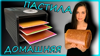 Веган RAW вкусняшка / ДОМАШНЯЯ ПАСТИЛА в дегидраторе (духовке)