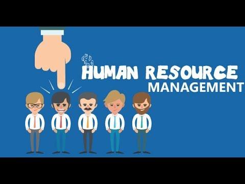 Hr Management System Part 4 (asp.net C#)