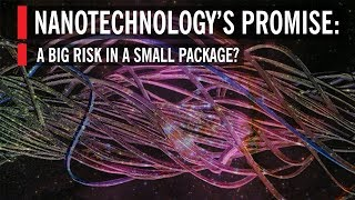 Nanotechnology's Promise: A Big Risk in a Small Package?