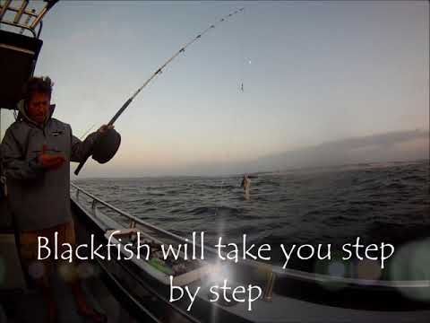 Blackfish Deepsea Fishing Charters Port Alfred Eastern Cape South Africa