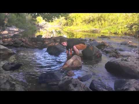 New England Rockhound Adventures Western Massachusetts Vesuvianite Discovery