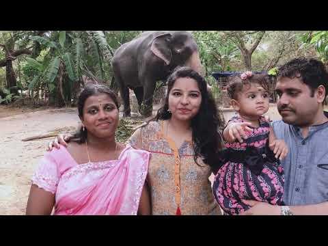 Guruvayoor Temple Vlog/ Trip To Kerala / Travel Vlog In Tamil/ Ananthi Raja