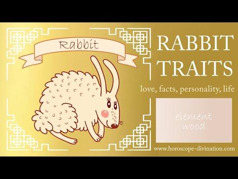 Chinese Zodiac Rabbit Personality ━ Rabbit Traits U0026 Feng Shui 兔