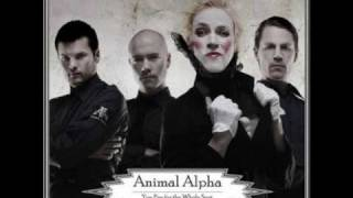 Animal Alpha - Even When I