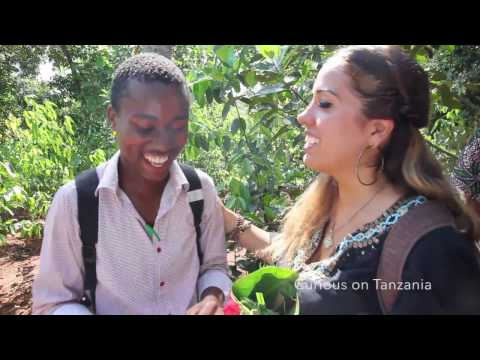 Why travel with Curious on Tanzania