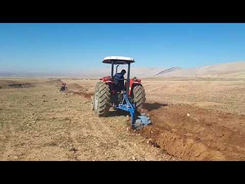 Seasonal of harvest and seeding in the country Iraq in province kurdistan how about your country