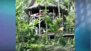Micronesia: Island Life