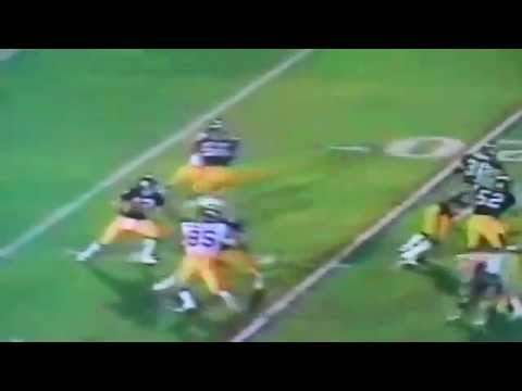 Bradshaw to John Stallworth 73 yard Touchdown Super Bowl XIV