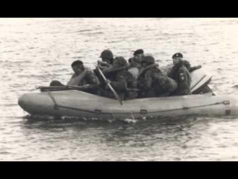 The Royal Danish Marine Corps :  the last salute :