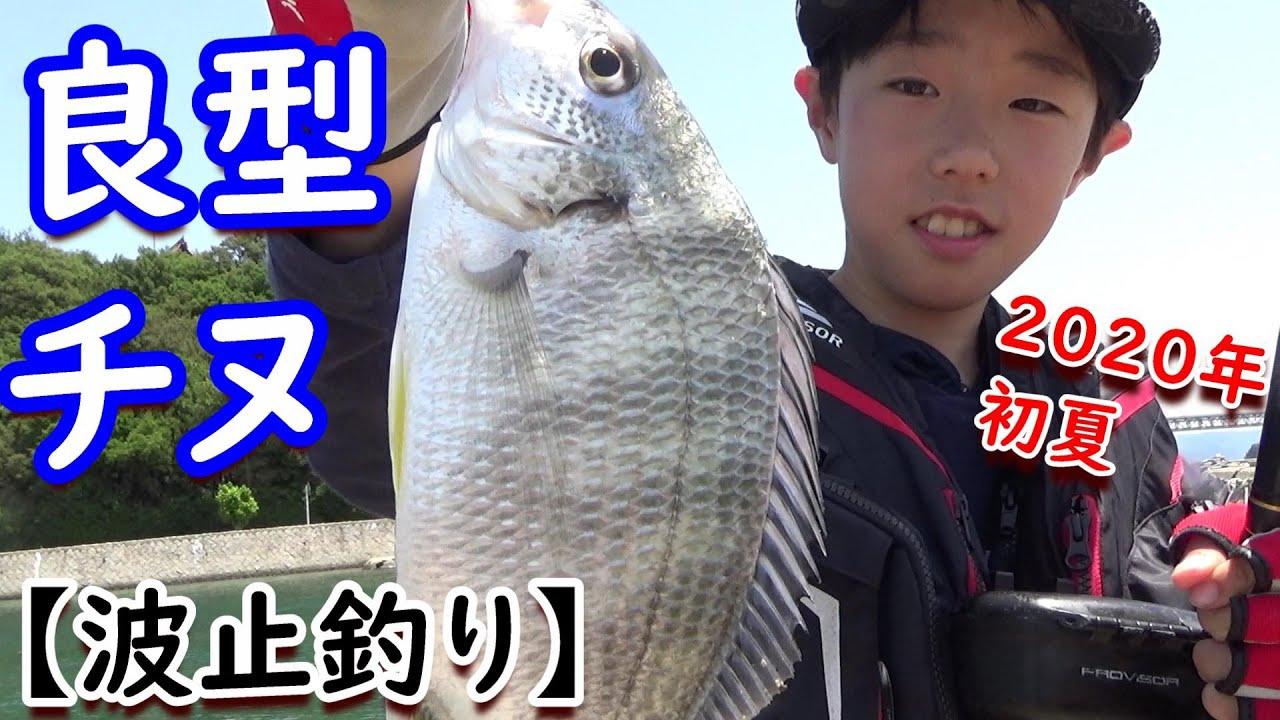 初夏のフカセ釣りで、良型チヌ!in岡山県下津井