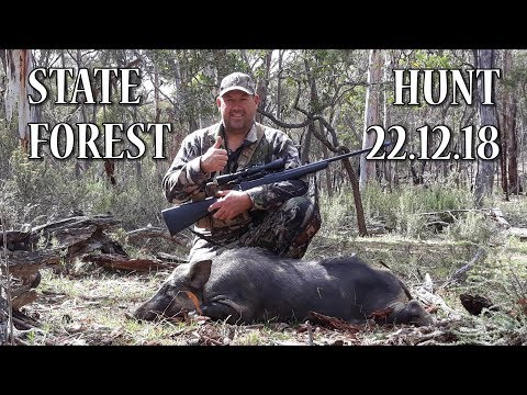 STATE FOREST HUNT 22.12.18