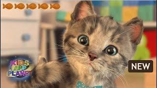 🐱 Little Kitten - My Favorite Cat - NEW Lovely & Cute Game - iOS