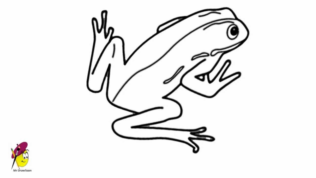 Tree Frog Line Drawing