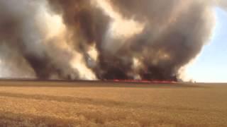 Pożar zboża - Fire grain