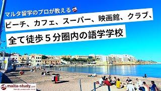今は大規模学校よりも生徒数が多い!ACE SCHOOLとその周りの施設について/a look at ACE English Malta and it's surroundings