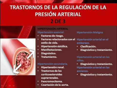 Fisiopatología de la presión arterial 2 de 3 - YouTube