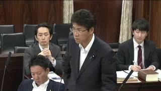 2016 05 26 参議院法務委員会