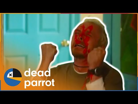Leaves | Spaced | Series 2 Episode 7 | Dead Parrot