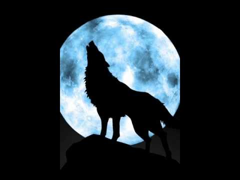 moonlight howl for subscribers(audio)
