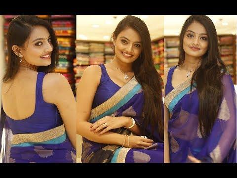 Tamil Telugu South Indian Masala Actress Nikitha Narayan In Neted Transparent Blue Saree