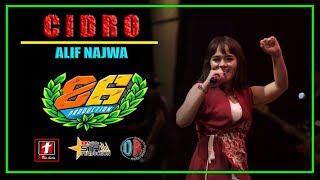 Download Lagu CIDRO TERBARU - ALIF NAJWA - OM.MG 86   SMS PRO AUDIO mp3