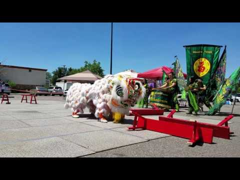 Teo Chew Association Unicorn Dragon and Lion Dance Team - CLDC 2017