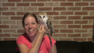 How to stop your owl from screeching your ears off + how owls can be manipulative!