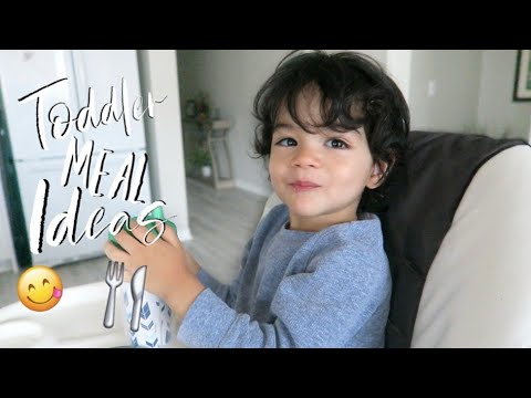 WHAT MY PICKY TODDLER EATS IN A DAY