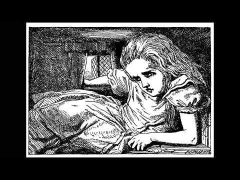 ASMR Bedtime Story | Chapter 4 | Alice's Adventures in Wonderland, by Lewis Carroll