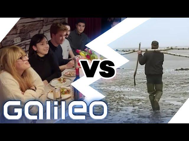 56-Personen-WG vs. Inselleben: 2 unterschiedliche Welten 200 km entfernt | Galileo | ProSieben