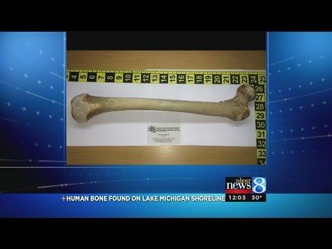 Human leg bone found in Oceana County