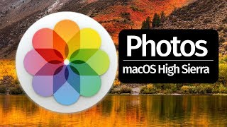 How to Export pictures videos from PHOTOS app in macOS High Sierra