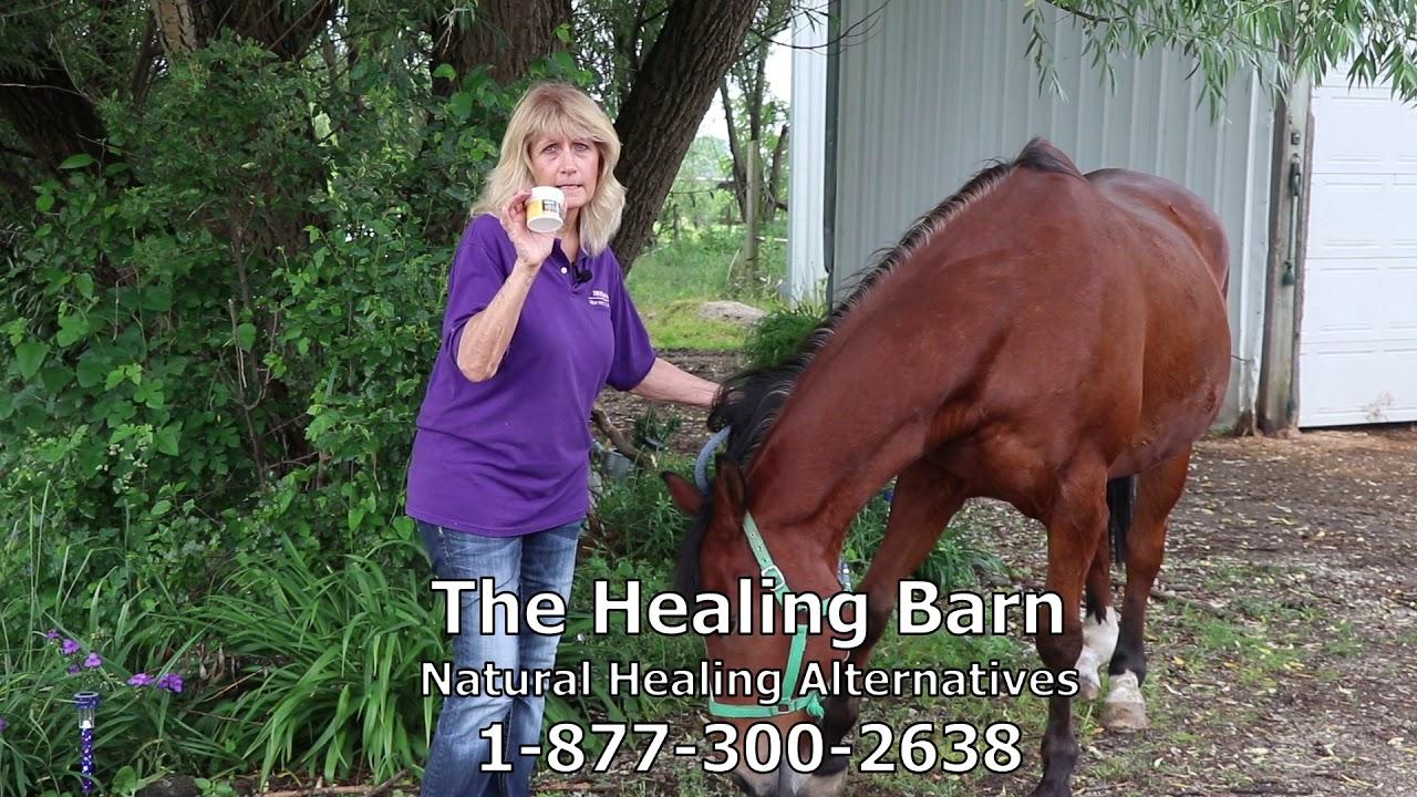 the healing barn youtubethe healing barn virex