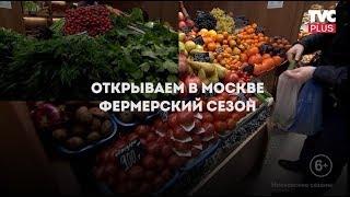 """Столица готовится принять двухдневный фестиваль """"Мос/еда!"""""""