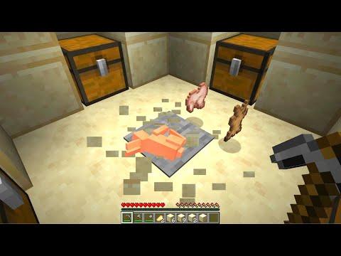 Minecraft But Its Too Dumb To Be True