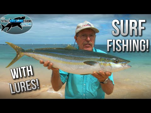 Epic Surf Fishing with Lures! Hints and Tips | TAFishing