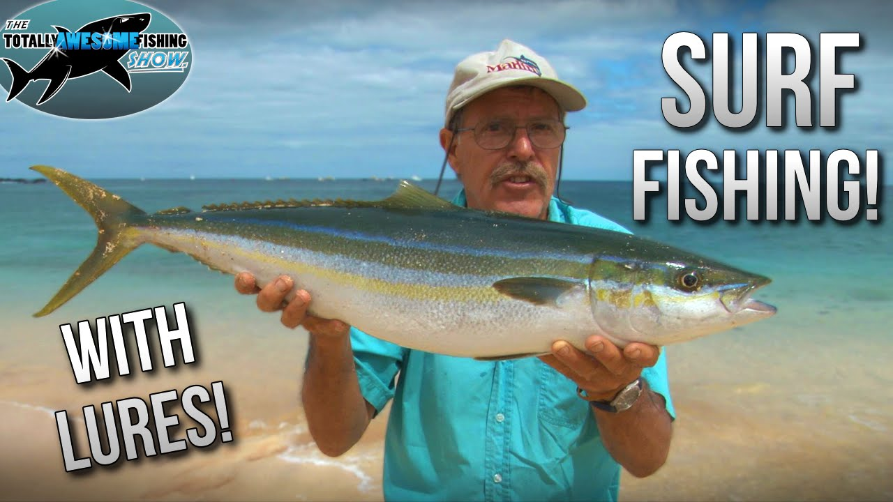 epic surf fishing with lures! hints and tips | tafishing - youtube, Fishing Bait