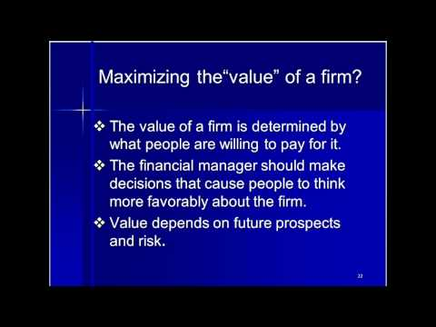 Finance and the Firm Chapter one