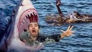 Phim Kinh Dị Hay Nhất 2017 - Phim Cá Mập Ăn Thịt Người Vietsub HD