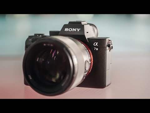 Sony A7III Review | Nothing Comes Close