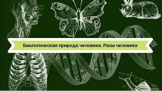 Биология 8 класс $2 Биологическая природа человека. Расы человека