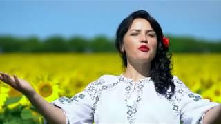 Moldovioara colt de rai