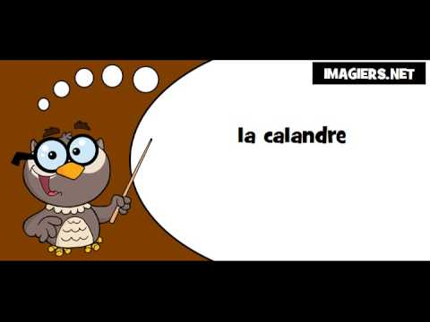 Lis Avec La Chouette # La Calandre