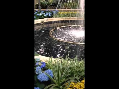 CF CARREFOUR LAVAL With Plants and Fountains