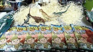 恐竜チョコ図鑑 AR3Dカードを当てろ!! Part49