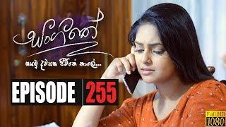Sangeethe | Episode 255 31st January 2020 Thumbnail