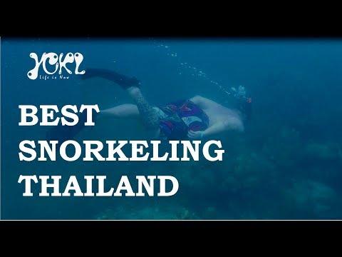 PHI PHI ISLANDS - SNORKELING PARADISE in Krabi Thailand